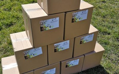 Przekazanie 10 paczek żywnościowych do MOPS w Puławach