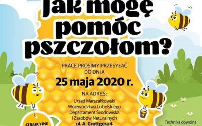 Uczmy dzieci jak ważne są pszczoły